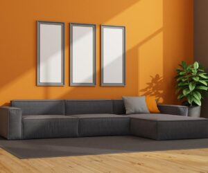 orange living room wall with couch.