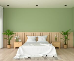 bedroom green wall paint.